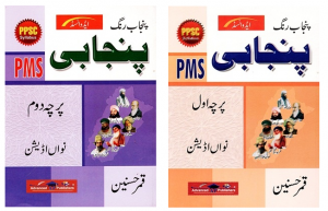 Punjab Rang Punjabi For PMS Paper 1 and 2 By Qamar Hussain Advanced